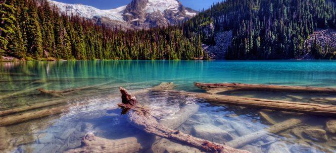 parcs nationaux aux Etats-Unis