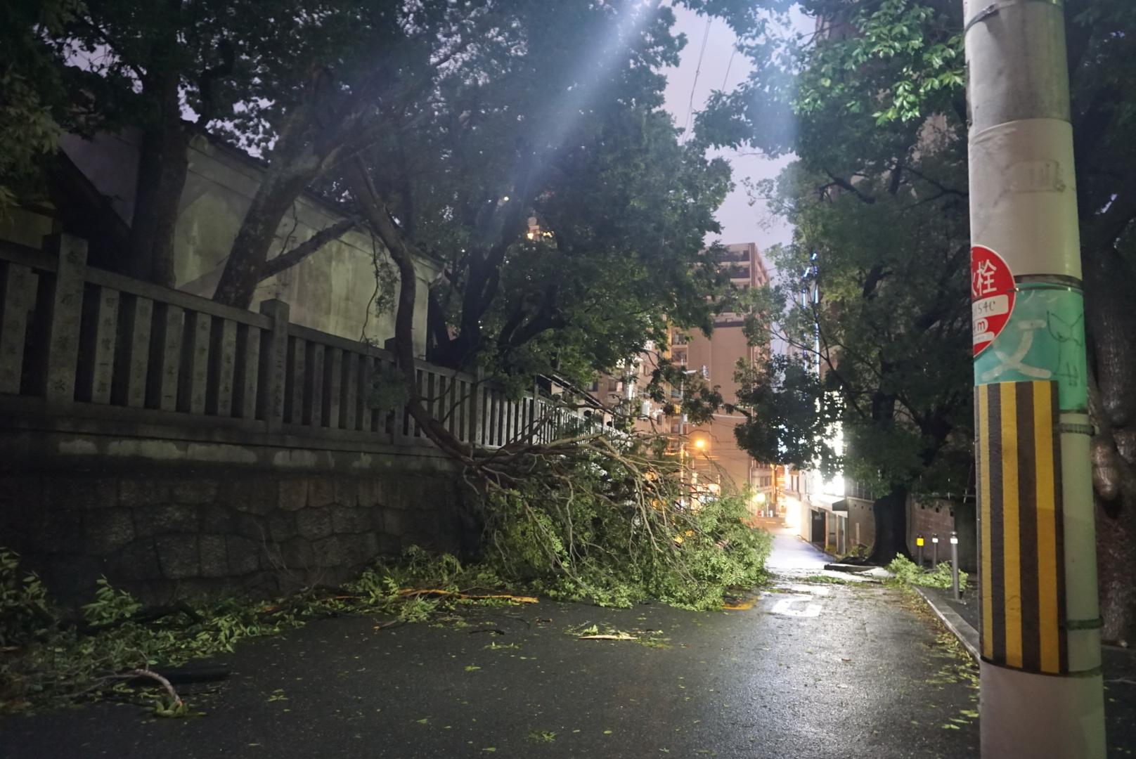 Le récit d'une journée cauchemardesque au cœur du typhon » !