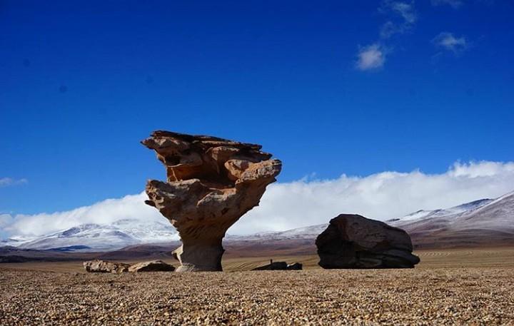 Bolivie : Altiplano, Salar d'Uyuni, Oruro et bien d'autres !
